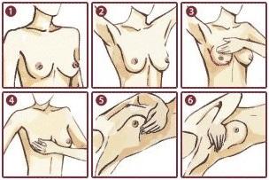 Как самостоятельно обследовать грудь
