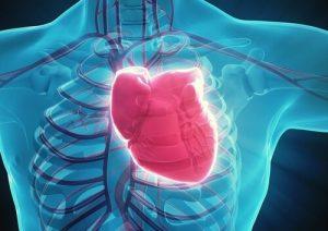 Зоб может вызвать развитие аритмии