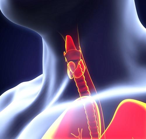 Для гипотиреоза характерна недостаточная выработка гормонов щитовидной железой