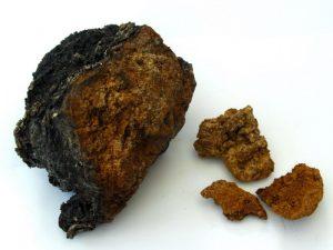 Лечение рака предстательной железы проводится с помощью отвара гриба чаги