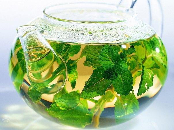 Успокаивающий чай из мяты и мелиссы дополнит лечение