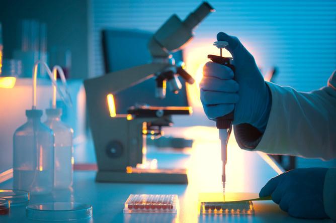 Образцы тканей опухоли рассматриваются и анализируются под микроскопом