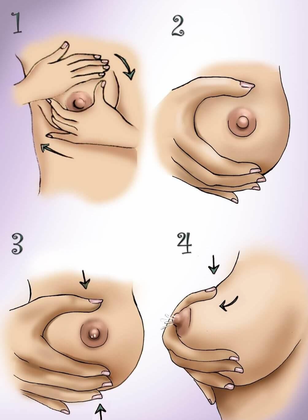 Сцеживание груди проводится в несколько этапов