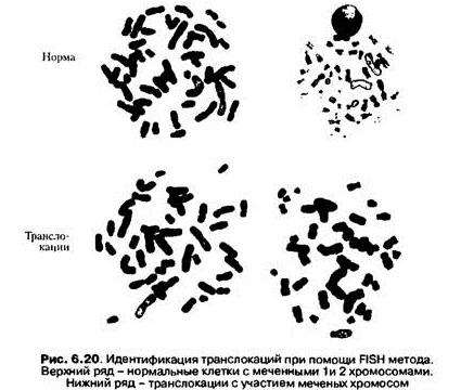 Данный метод чувствителен к изменениям в клетках