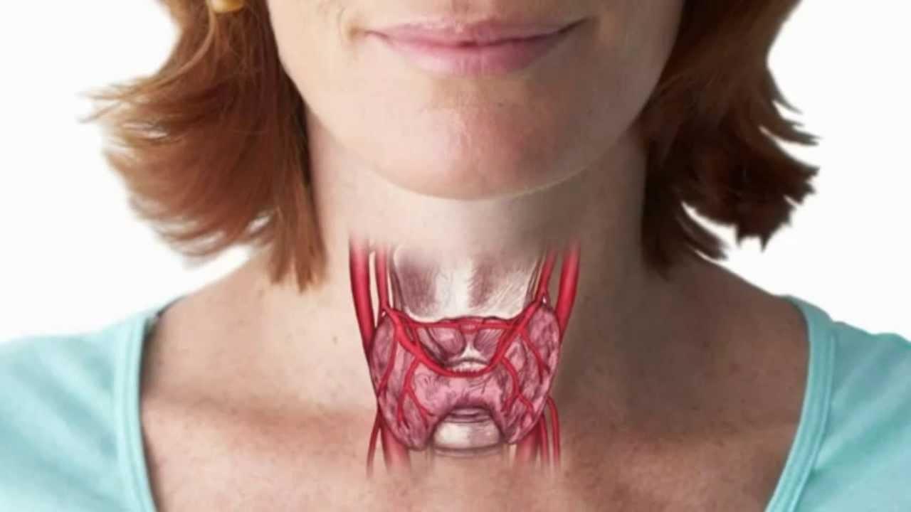 Фолликулярный рак поражает кровеносную систему