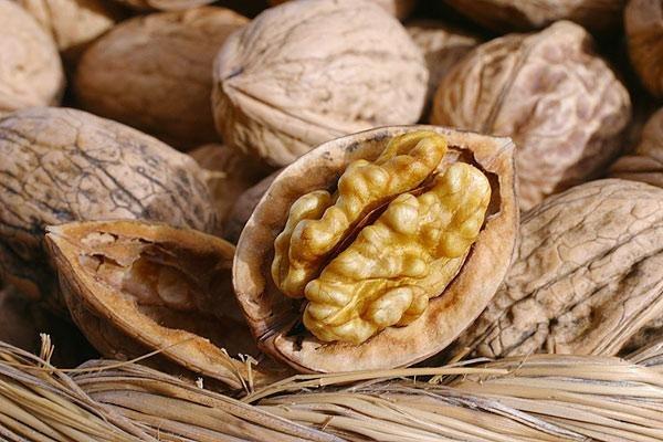 Грецкие орехи содержат много йода и рекомендованы к употреблению