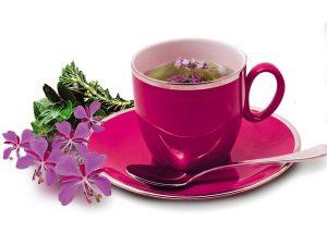 Ива-чай заливают кипятком и пьют трижды в день