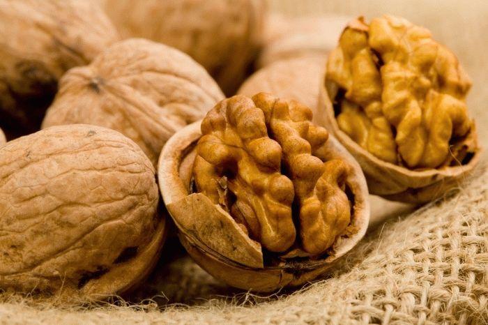 Молодые мамы едят грецкие орехи для усиления лактации