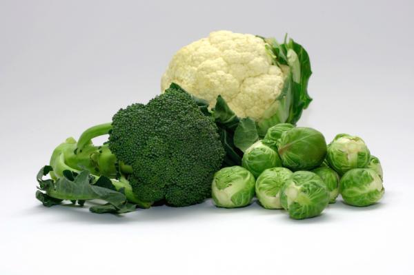 Цветная капуста и брокколи смогут разнообразить рацион кормящей женщины
