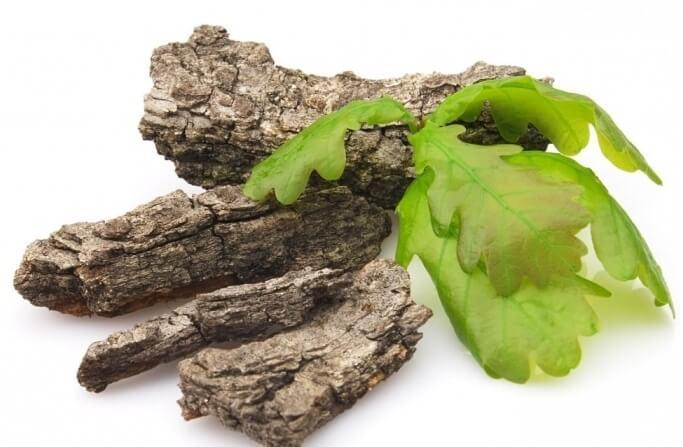 В лечении фиброаденомы используется кора дуба