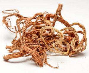 Для лечения простатита используют красный корень