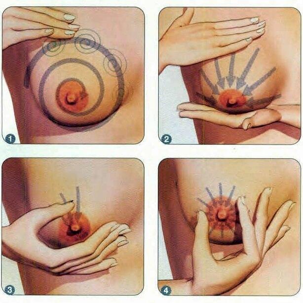 Как делать массаж грудей при беременности