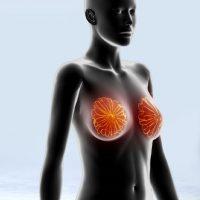 Мастопатия развивается из-за резких изменений гормонального фона