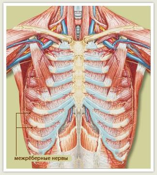 Межреберная невралгия вызывает боль в груди при движении