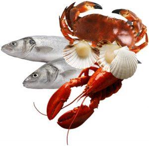 Для профилактики заболеваний щитовидной железы следует употреблять морепродукты