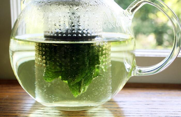 Чай на основе мяты и крапивы увеличивает количество молока