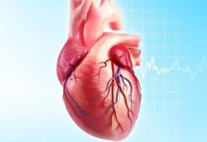 О проблемах со щитовидной железой свидетельствуют нарушения в работе сердца
