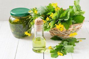 Настойку чистотела используются в лечении узлов щитовидной железы