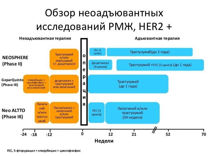 Обзор неадъювантных исследований РМЖ