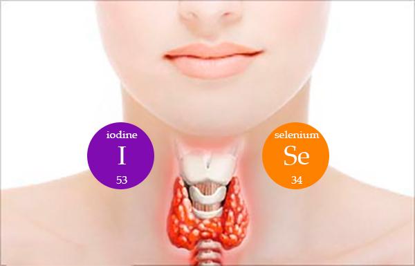 Заболевания щитовидной железы возникают при недостатке йода и селена в организме