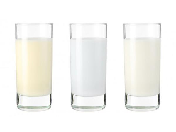 Переднее и заднее молоко имеют различный состав и питательную ценность