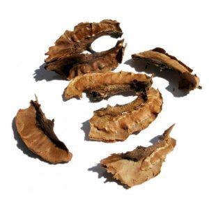 Перегородки грецкого ореха используются в терапии щитовидной железы