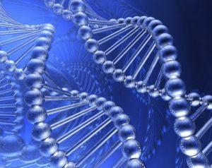Склонность к развитию аденомы передается по наследству