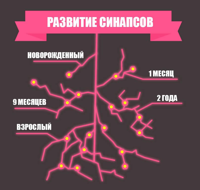 Гормон стимулирует развитие стуктур головного мозга