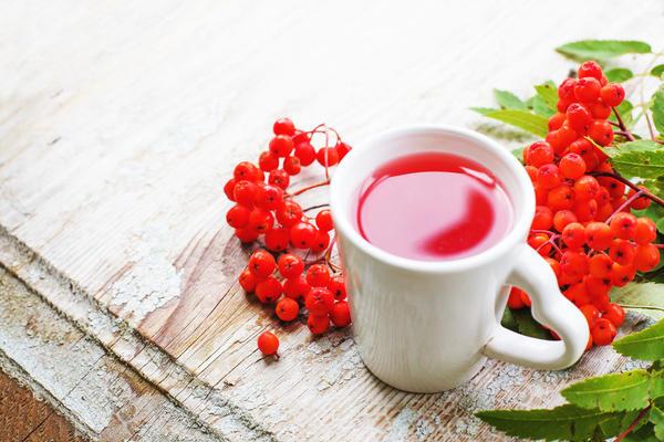 В лечении геморроя используют свежевыжатый рябиновый сок