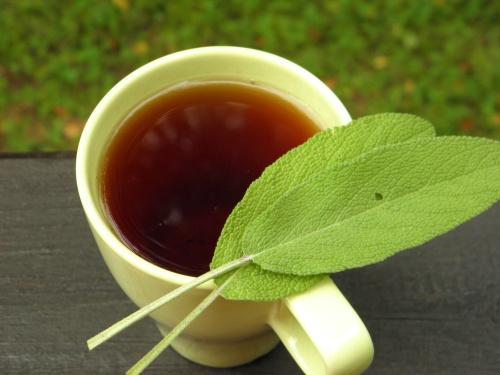Снизить выработку молока поможет чай из шалфея