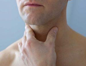 Щитовидная железа отвечает за работу нервной и сердечно-сосудистой системы у жучины