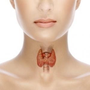 В норме щитовидная железа не визуализируется