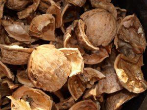 Лечение диффузного зоба проводится с помощью настойки на основе скорлупы ореха