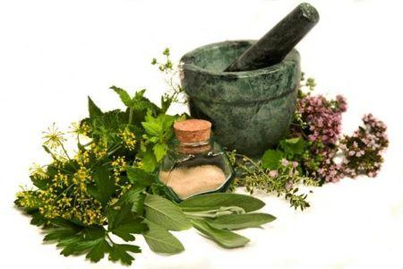 Самый безопасный метод лечения мастопатии - применение трав