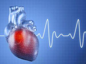 При гипертиреозе ускоряется сердечный ритм