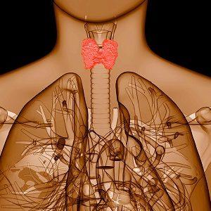 Вторичный гипотиреоз появляется в результате гормональных нарушений в организме