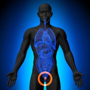 Выживаемость при раке простаты зависит от стадии заболевания